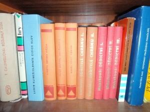 knihy v obecní knihovně Loužnice